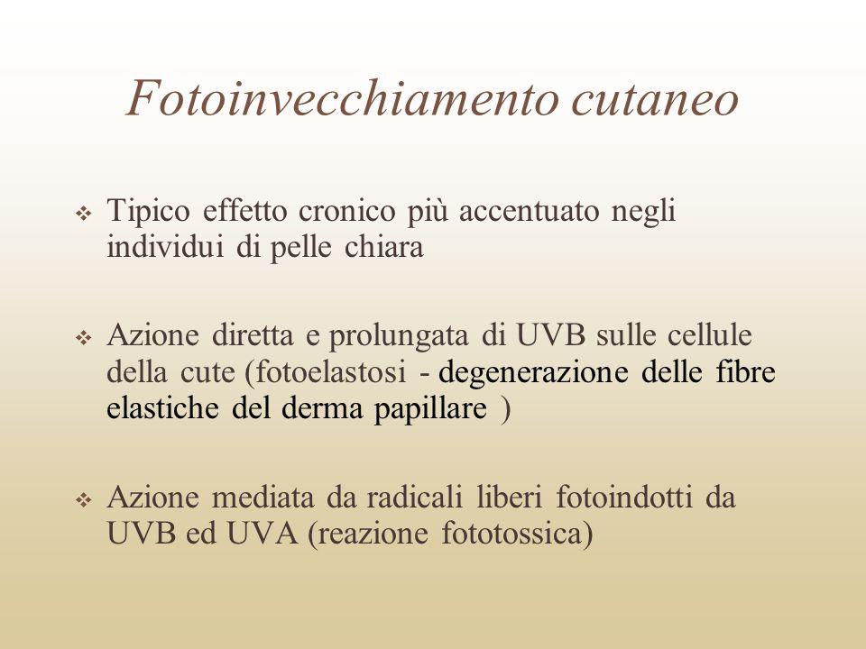 Eritema Effetto deterministico acuto legato, in particolare, alla esposizione ad UVB Studiato per la determinazione della soglia e della correlazione dose-risposta La pigmentazione cutanea protegge dalleritema