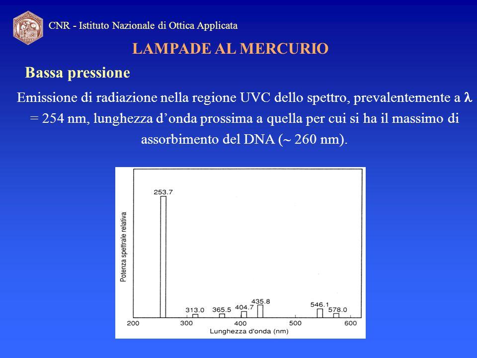 CNR - Istituto Nazionale di Ottica Applicata LAMPADE AL MERCURIO Bassa pressione Emissione di radiazione nella regione UVC dello spettro, prevalenteme