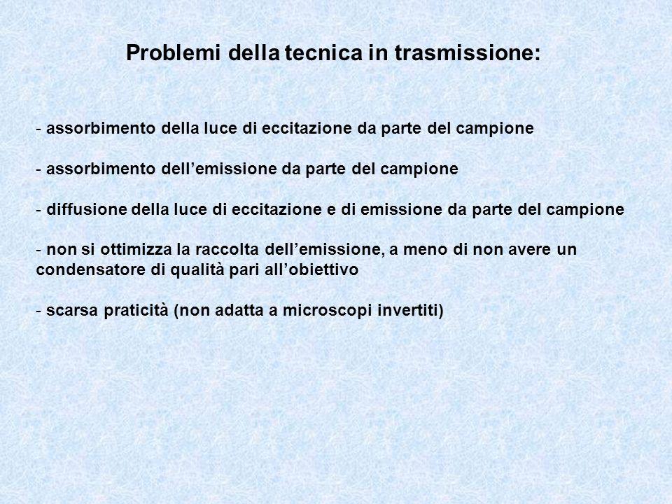 Problemi della tecnica in trasmissione: - assorbimento della luce di eccitazione da parte del campione - assorbimento dellemissione da parte del campi