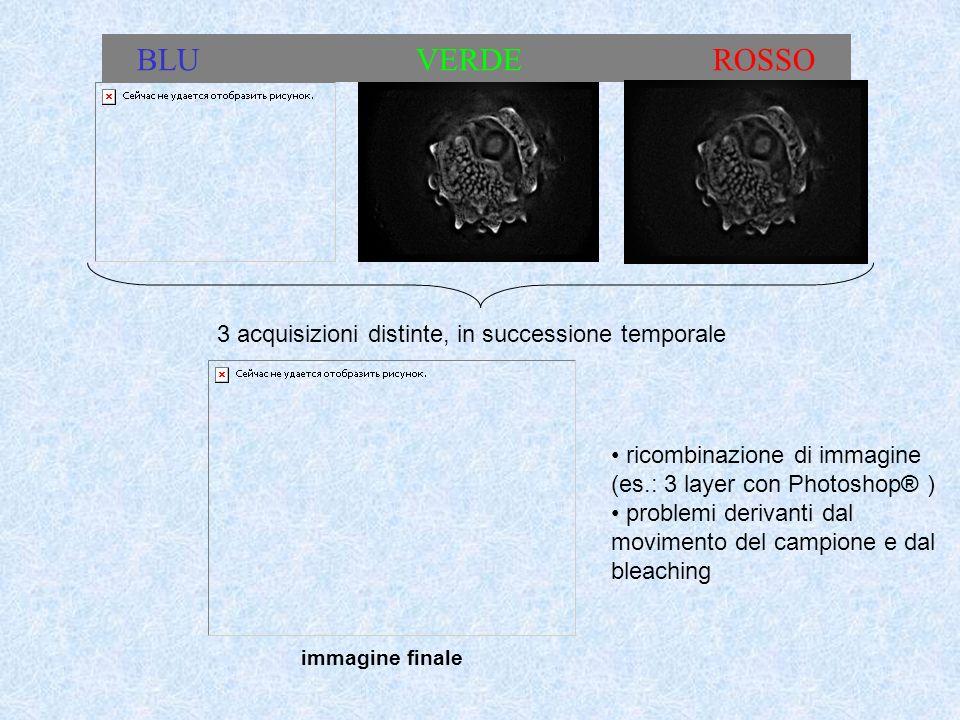 BLU VERDE ROSSO 3 acquisizioni distinte, in successione temporale immagine finale ricombinazione di immagine (es.: 3 layer con Photoshop® ) problemi d