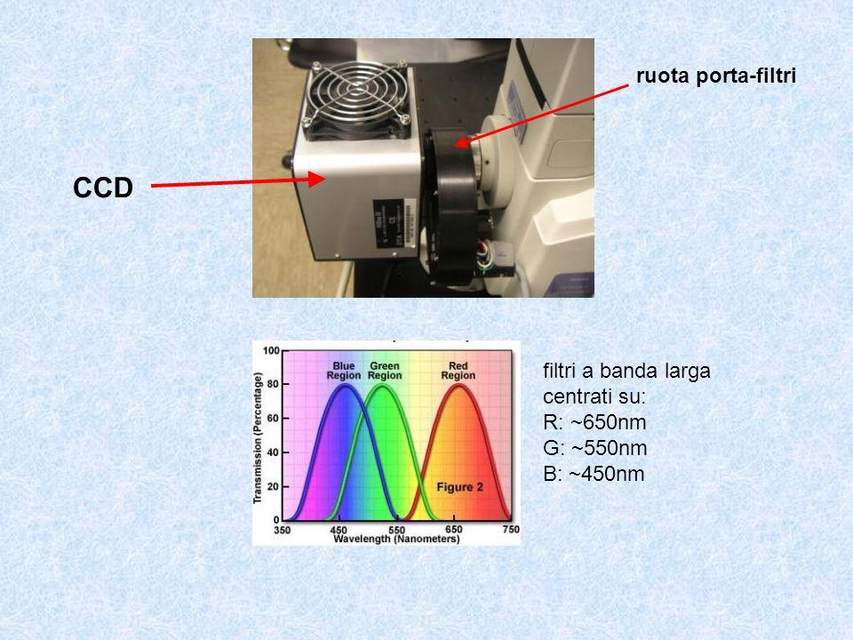 CCD ruota porta-filtri filtri a banda larga centrati su: R: ~650nm G: ~550nm B: ~450nm