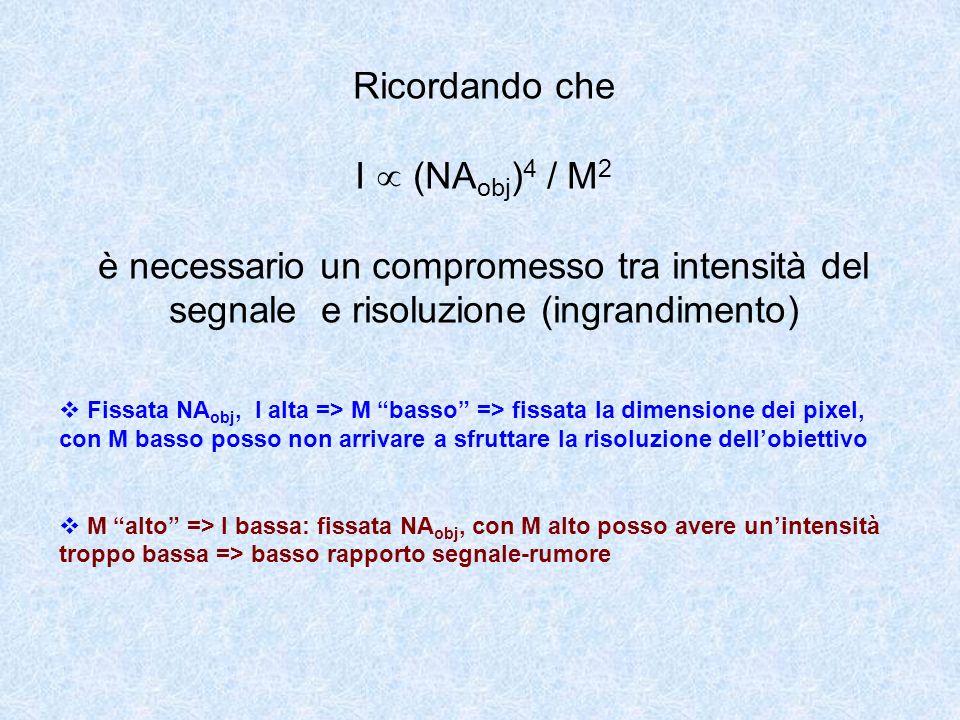 Ricordando che I (NA obj ) 4 / M 2 è necessario un compromesso tra intensità del segnale e risoluzione (ingrandimento) Fissata NA obj, I alta => M bas