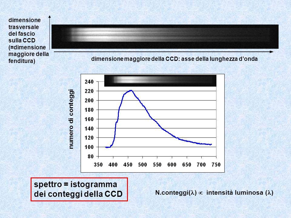 dimensione maggiore della CCD: asse della lunghezza donda dimensione trasversale del fascio sulla CCD (=dimensione maggiore della fenditura) spettro =