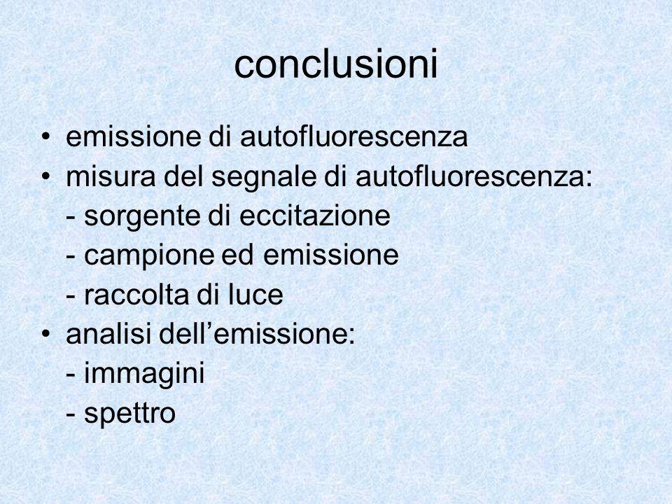 conclusioni emissione di autofluorescenza misura del segnale di autofluorescenza: - sorgente di eccitazione - campione ed emissione - raccolta di luce