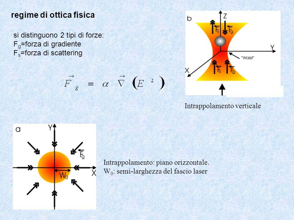 Intrappolamento: piano orizzontale. W 0 : semi-larghezza del fascio laser Intrappolamento verticale regime di ottica fisica si distinguono 2 tipi di f