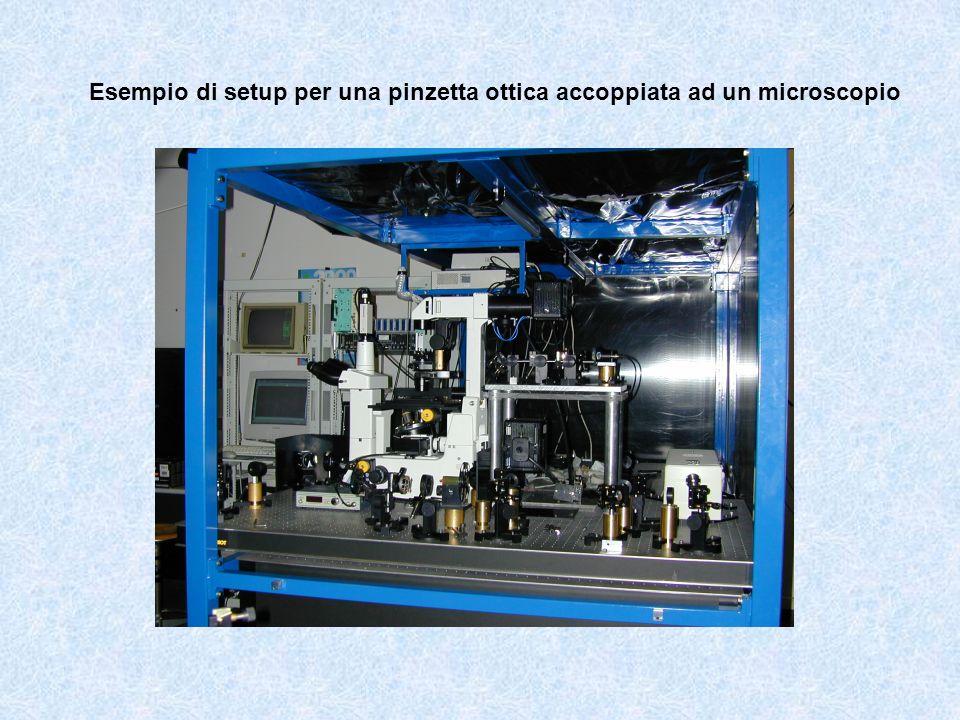 Esempio di setup per una pinzetta ottica accoppiata ad un microscopio