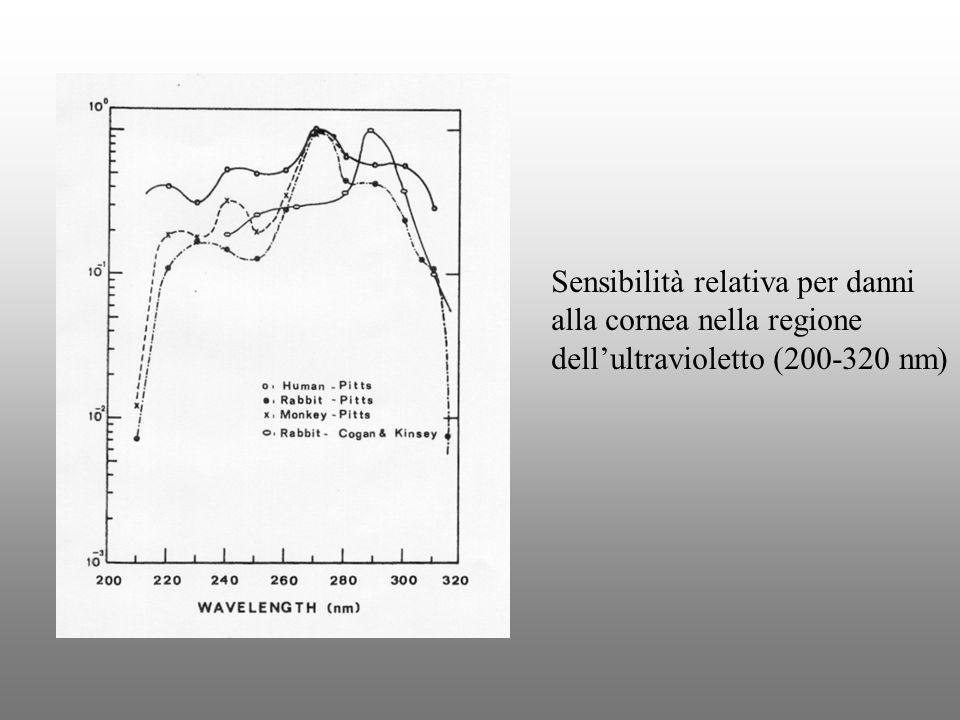 Sensibilità relativa per danni alla cornea nella regione dellultravioletto (200-320 nm)