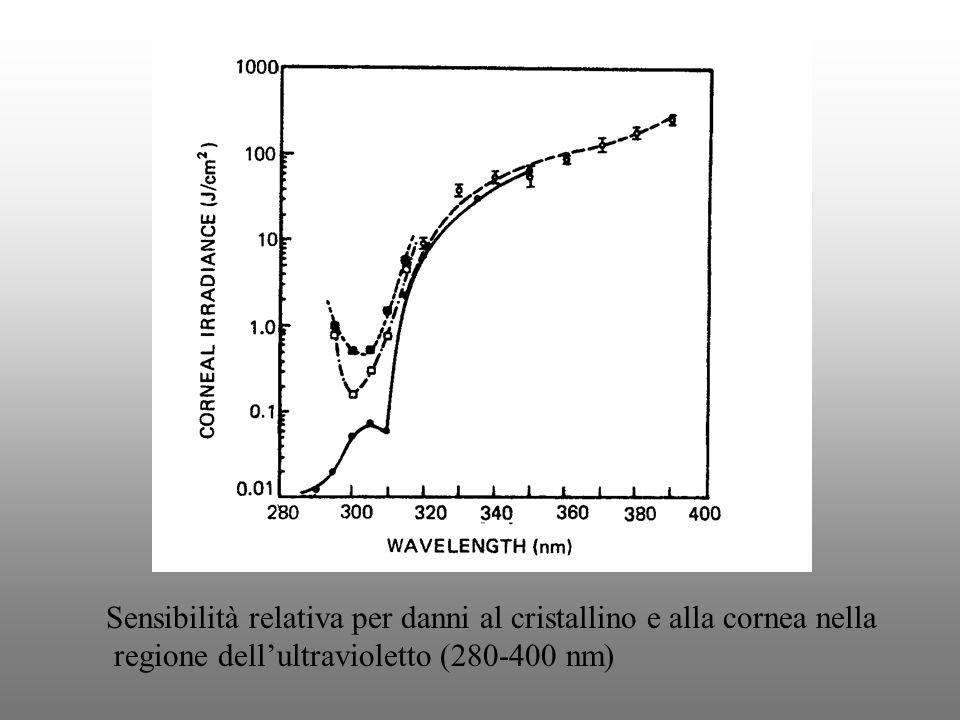 Sensibilità relativa per danni al cristallino e alla cornea nella regione dellultravioletto (280-400 nm)