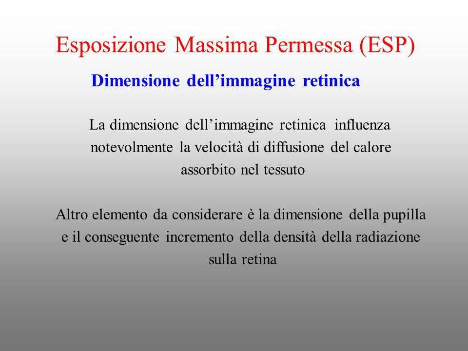 Dimensione dellimmagine retinica La dimensione dellimmagine retinica influenza notevolmente la velocità di diffusione del calore assorbito nel tessuto