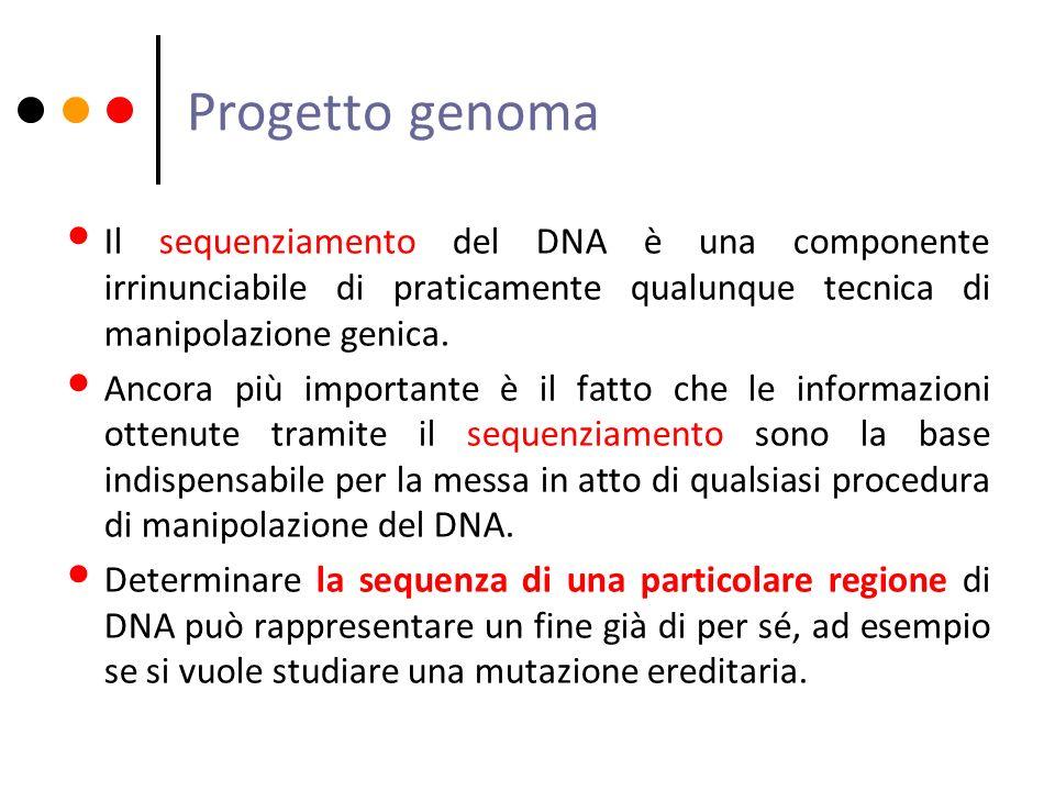 Progetto genoma Il sequenziamento del DNA è una componente irrinunciabile di praticamente qualunque tecnica di manipolazione genica. Ancora più import