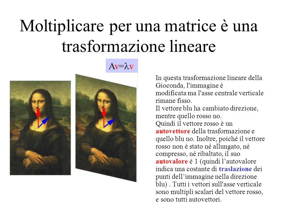 Moltiplicare per una matrice è una trasformazione lineare In questa trasformazione lineare della Gioconda, l'immagine è modificata ma l'asse centrale