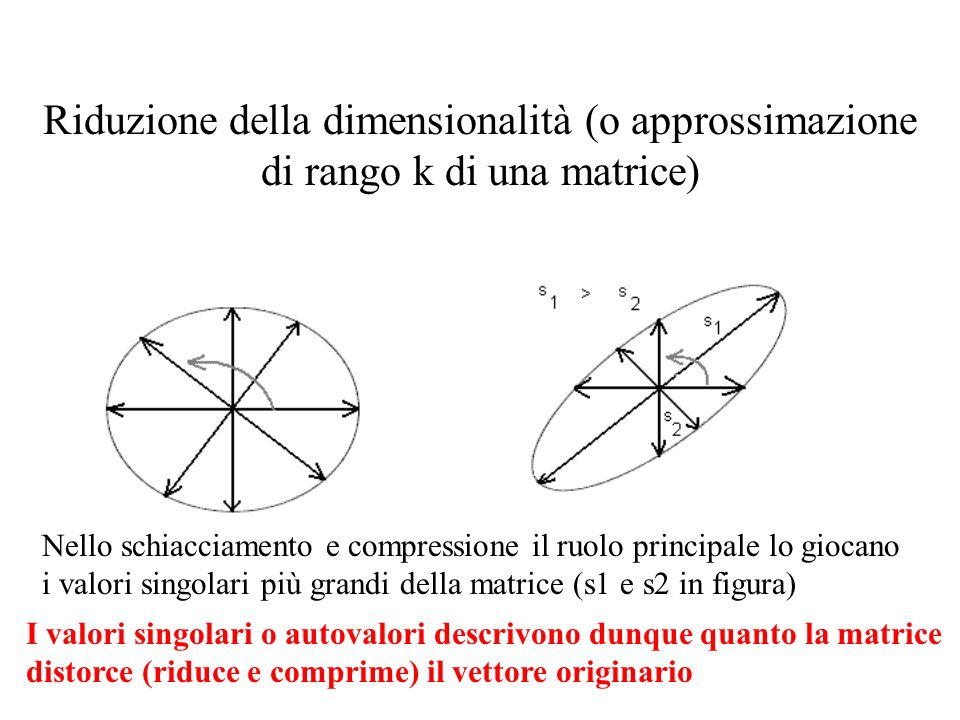 Riduzione della dimensionalità (o approssimazione di rango k di una matrice) Nello schiacciamento e compressione il ruolo principale lo giocano i valori singolari più grandi della matrice (s1 e s2 in figura) I valori singolari o autovalori descrivono dunque quanto la matrice distorce (riduce e comprime) il vettore originario