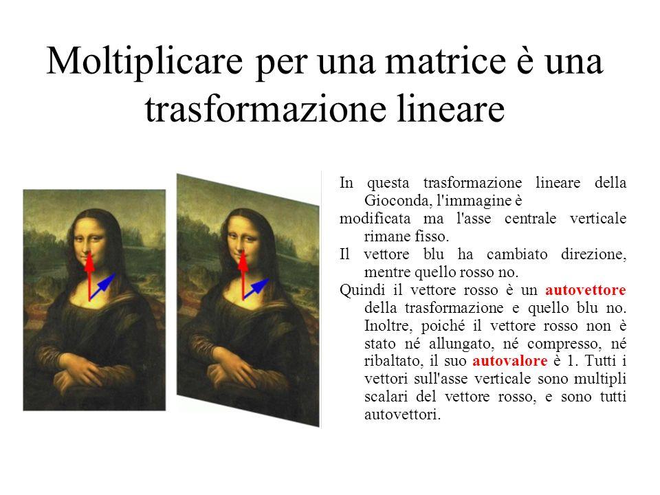 Moltiplicare per una matrice è una trasformazione lineare In questa trasformazione lineare della Gioconda, l immagine è modificata ma l asse centrale verticale rimane fisso.