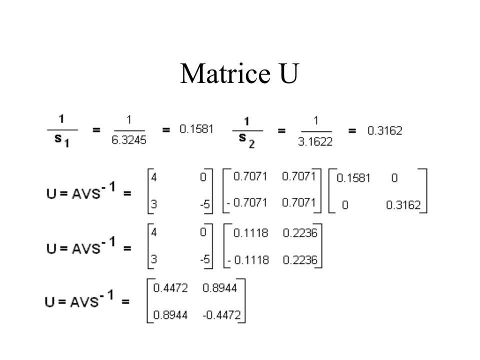 Matrice U