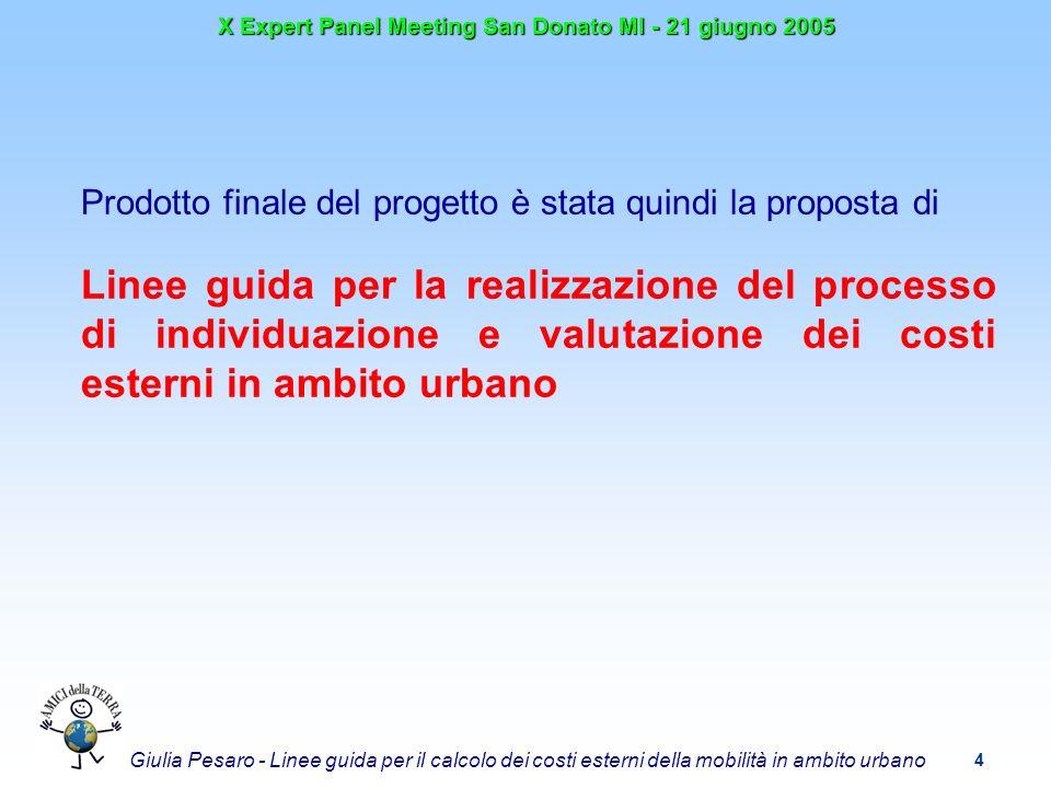 4 X Expert Panel Meeting San Donato MI - 21 giugno 2005 Giulia Pesaro - Linee guida per il calcolo dei costi esterni della mobilità in ambito urbano Prodotto finale del progetto è stata quindi la proposta di Linee guida per la realizzazione del processo di individuazione e valutazione dei costi esterni in ambito urbano