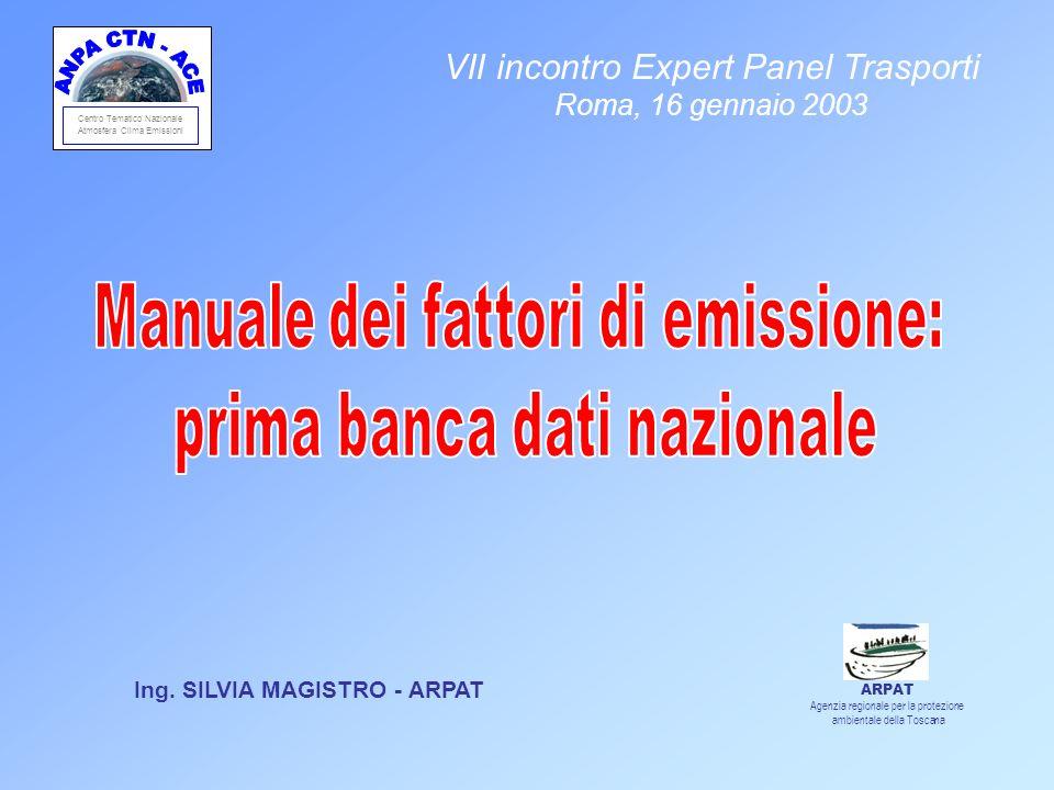 Centro Tematico Nazionale Atmosfera Clima Emissioni Ing. SILVIA MAGISTRO - ARPAT VII incontro Expert Panel Trasporti Roma, 16 gennaio 2003 ARPAT Agenz