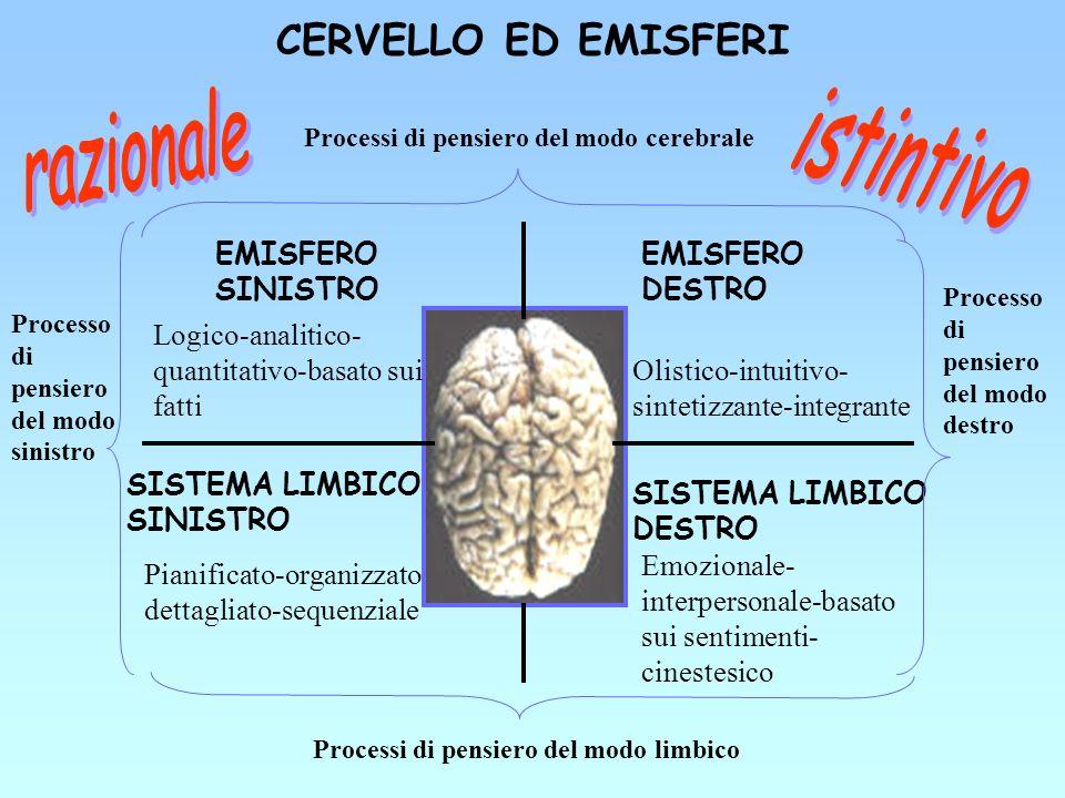 CERVELLO ED EMISFERI SISTEMA LIMBICO SINISTRO Pianificato-organizzato- dettagliato-sequenziale SISTEMA LIMBICO DESTRO Emozionale- interpersonale-basat