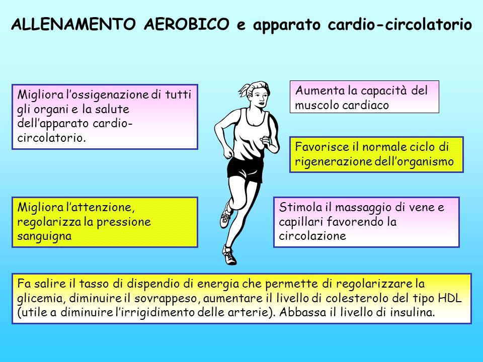 ALLENAMENTO AEROBICO e apparato cardio-circolatorio Aumenta la capacità del muscolo cardiaco Fa salire il tasso di dispendio di energia che permette d