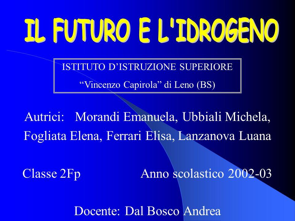 Autrici: Morandi Emanuela, Ubbiali Michela, Fogliata Elena, Ferrari Elisa, Lanzanova Luana Classe 2Fp Anno scolastico 2002-03 Docente: Dal Bosco Andre