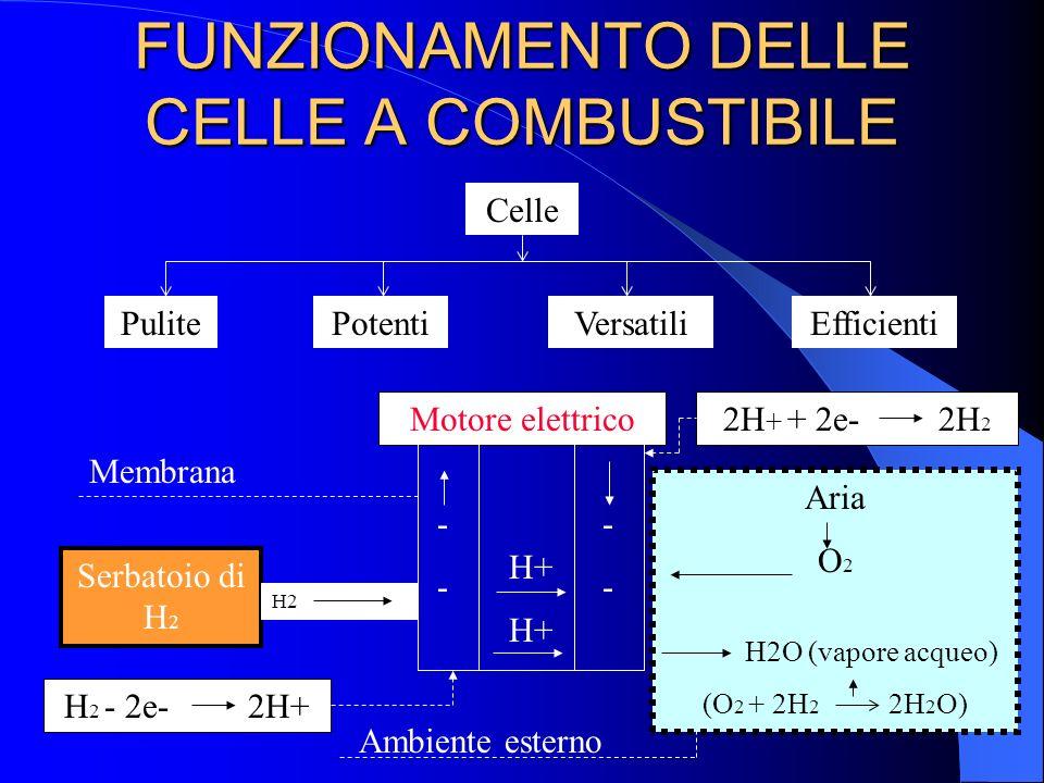 FUNZIONAMENTO DELLE CELLE A COMBUSTIBILE Celle EfficientiVersatiliPulitePotenti Serbatoio di H 2 Motore elettrico H2 ---- ---- H+ Aria O 2 H2O (vapore
