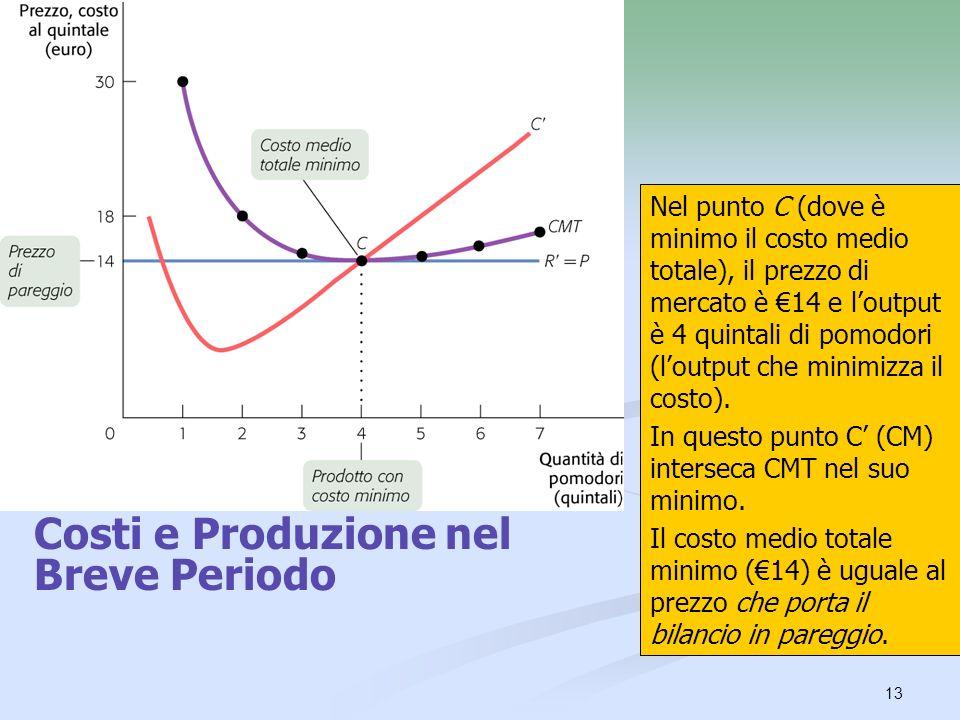 13 Nel punto C (dove è minimo il costo medio totale), il prezzo di mercato è 14 e loutput è 4 quintali di pomodori (loutput che minimizza il costo). I