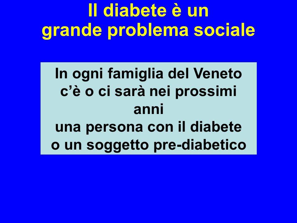 Il diabete è un grande problema sociale In ogni famiglia del Veneto cè o ci sarà nei prossimi anni una persona con il diabete o un soggetto pre-diabet