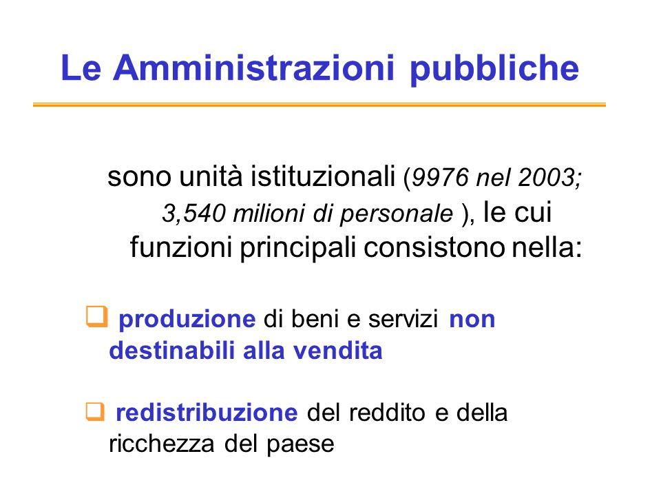 Le Amministrazioni pubbliche sono unità istituzionali (9976 nel 2003; 3,540 milioni di personale ), le cui funzioni principali consistono nella: produzione di beni e servizi non destinabili alla vendita redistribuzione del reddito e della ricchezza del paese