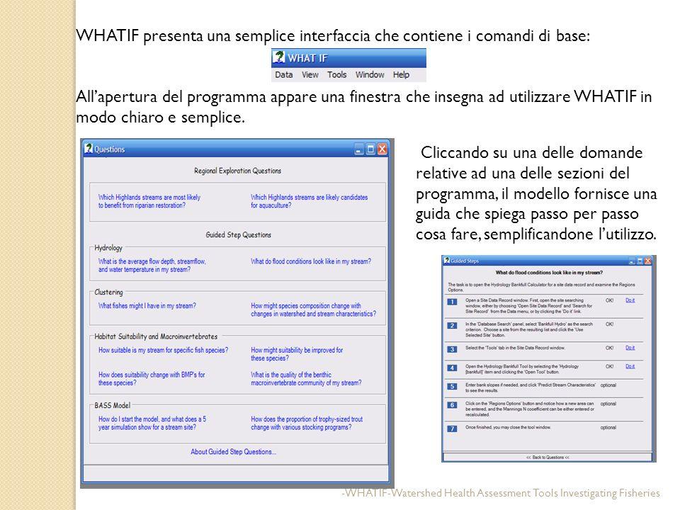 WHATIF presenta una semplice interfaccia che contiene i comandi di base: Allapertura del programma appare una finestra che insegna ad utilizzare WHATI