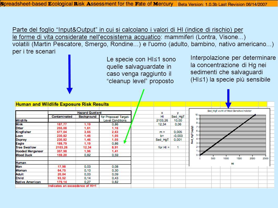 Parte del foglio Input&Output in cui si calcolano i valori di HI (indice di rischio) per le forme di vita considerate nell'ecosistema acquatico: mammi
