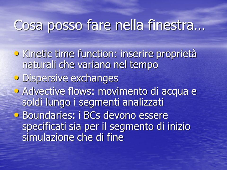 Cosa posso fare nella finestra… Kinetic time function: inserire proprietà naturali che variano nel tempo Kinetic time function: inserire proprietà nat