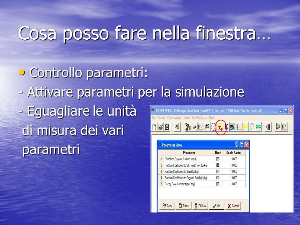 Cosa posso fare nella finestra… Controllo parametri: Controllo parametri: - Attivare parametri per la simulazione - Eguagliare le unità di misura dei