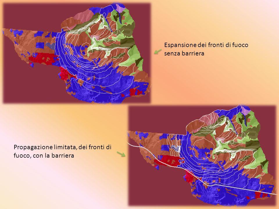 Espansione dei fronti di fuoco senza barriera Propagazione limitata, dei fronti di fuoco, con la barriera