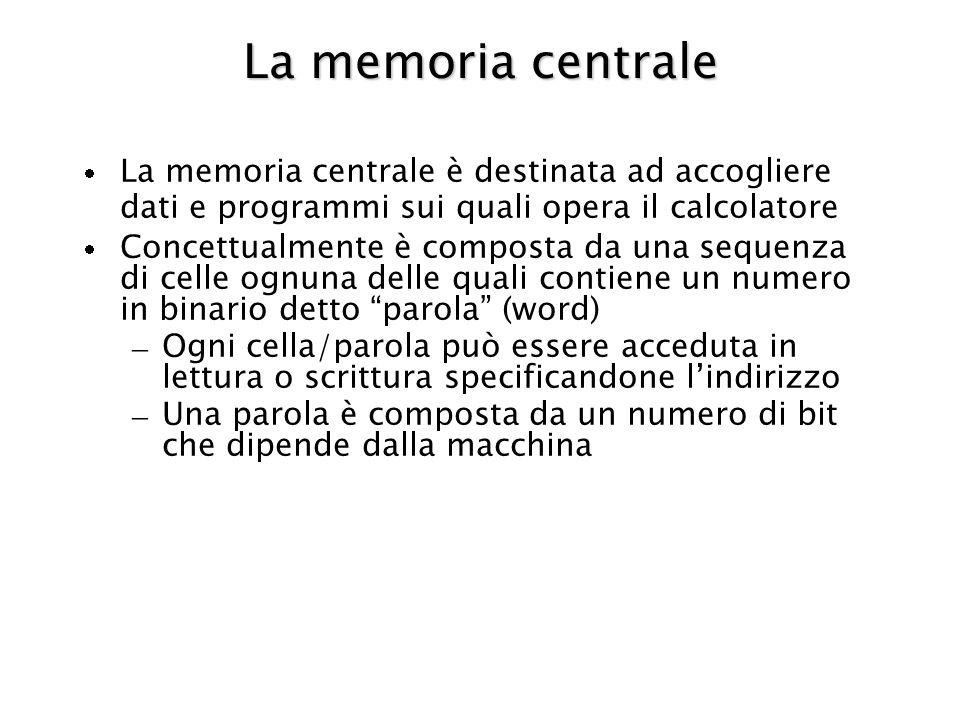 La memoria centrale La memoria centrale è destinata ad accogliere dati e programmi sui quali opera il calcolatore Concettualmente è composta da una sequenza di celle ognuna delle quali contiene un numero in binario detto parola (word) – Ogni cella/parola può essere acceduta in lettura o scrittura specificandone lindirizzo – Una parola è composta da un numero di bit che dipende dalla macchina