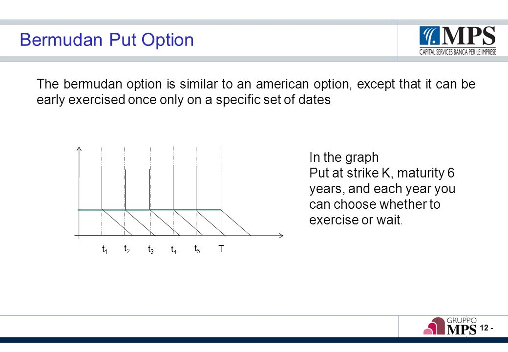 - 12 - Bermudan Put Option The bermudan option is similar to an american option, except that it can be early exercised once only on a specific set of dates t1t1 t2t2 t3t3 t4t4 t5t5 T In the graph Put at strike K, maturity 6 years, and each year you can choose whether to exercise or wait.