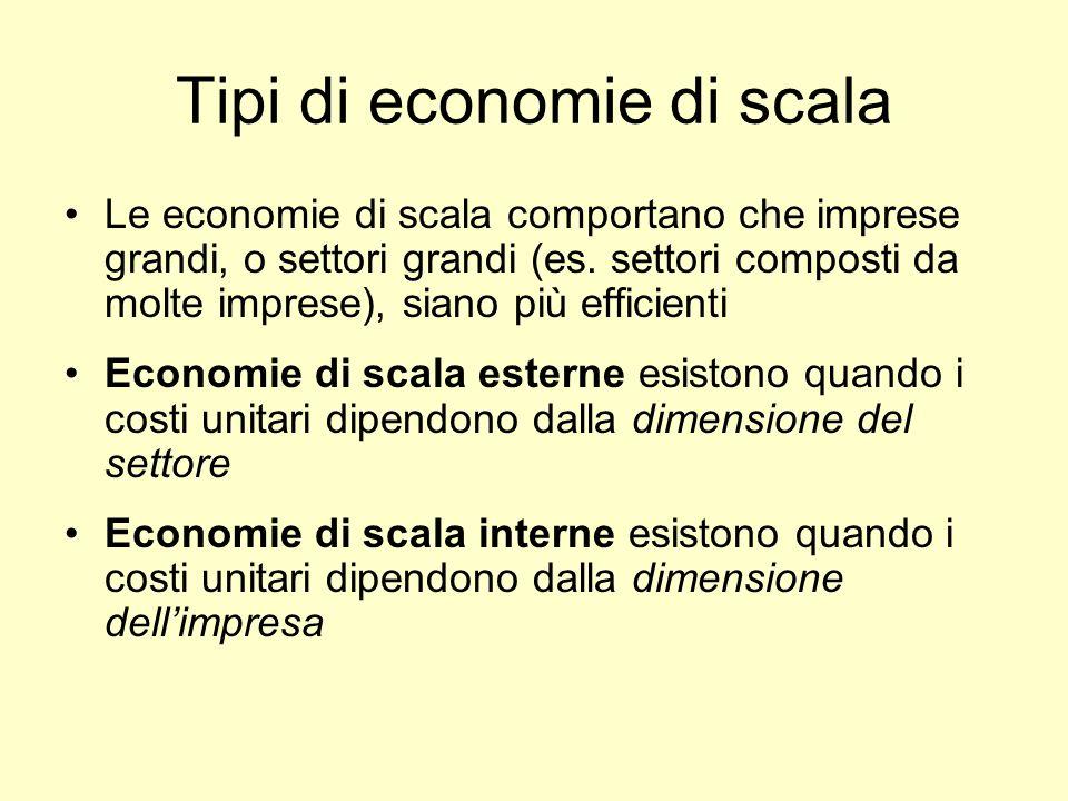 Tipi di economie di scala Le economie di scala comportano che imprese grandi, o settori grandi (es. settori composti da molte imprese), siano più effi