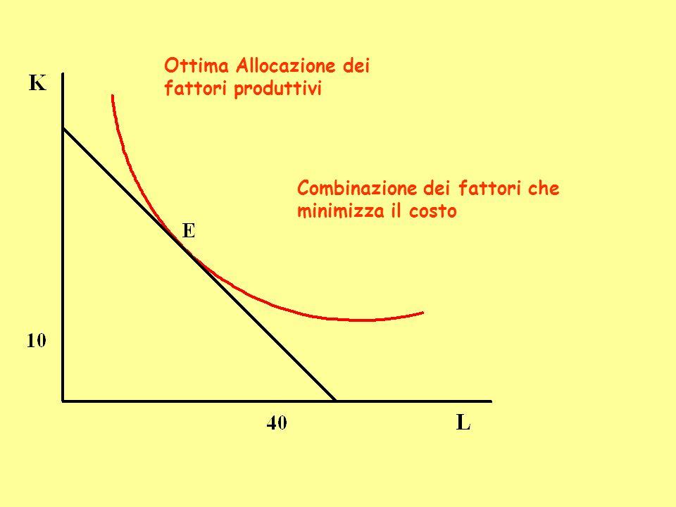 Ottima Allocazione dei fattori produttivi Combinazione dei fattori che minimizza il costo