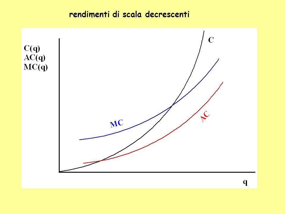 rendimenti di scala decrescenti