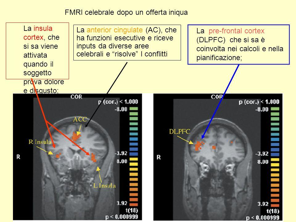 FMRI celebrale dopo un offerta iniqua La insula cortex, che si sa viene attivata quando il soggetto prova dolore e disgusto; La pre-frontal cortex (DLPFC) che si sa è coinvolta nei calcoli e nella pianificazione; La anterior cingulate (AC), che ha funzioni esecutive e riceve inputs da diverse aree celebrali e risolve I conflitti