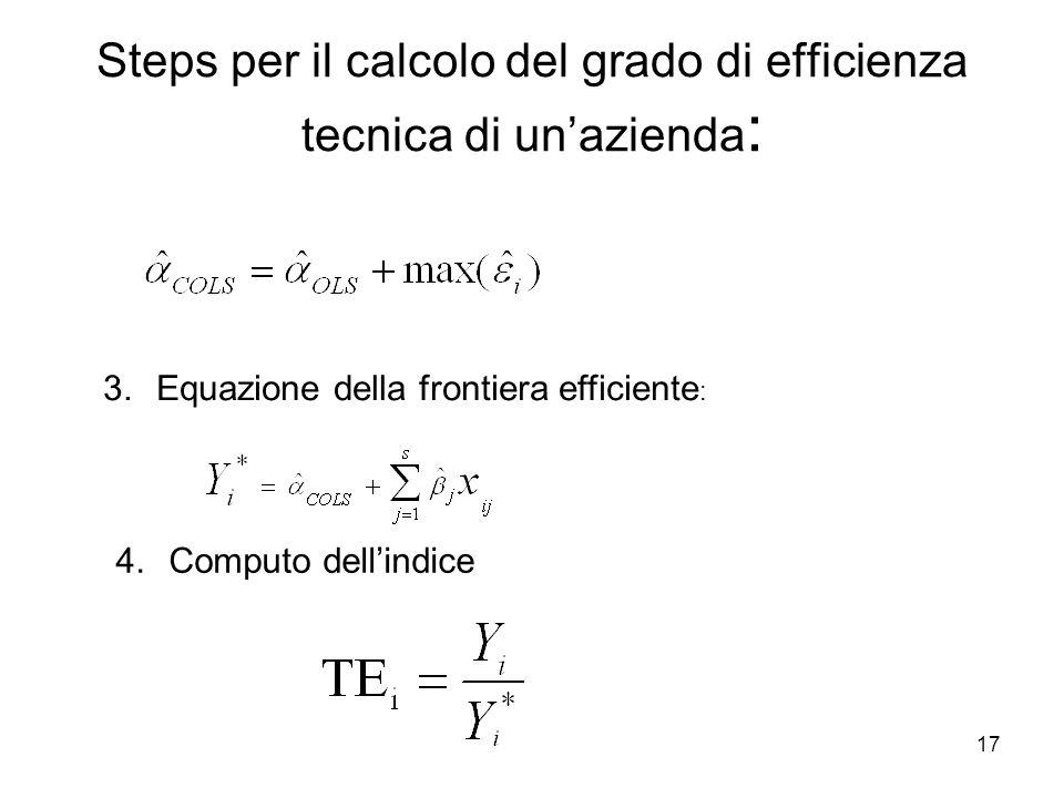 17 Steps per il calcolo del grado di efficienza tecnica di unazienda : 3.Equazione della frontiera efficiente : 4.Computo dellindice