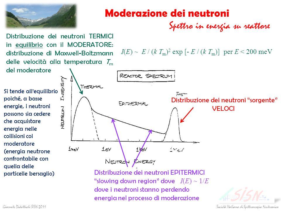 Società Italiana di Spettroscopia Neutronica Giornate Didattiche SISN 2011 Distribuzione dei neutroni sorgente VELOCI Distribuzione dei neutroni TERMI