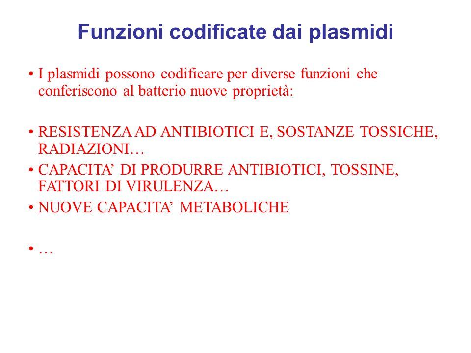 Funzioni codificate dai plasmidi I plasmidi possono codificare per diverse funzioni che conferiscono al batterio nuove proprietà: RESISTENZA AD ANTIBI