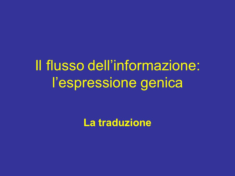 Il flusso dellinformazione: lespressione genica La traduzione