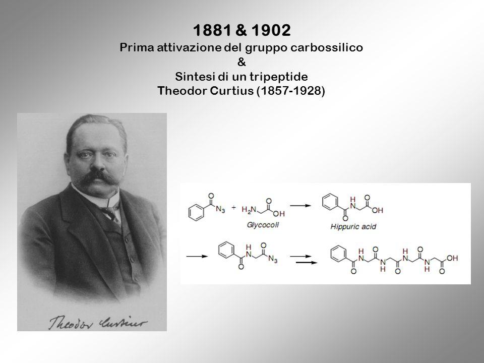 1881 & 1902 Prima attivazione del gruppo carbossilico & Sintesi di un tripeptide Theodor Curtius (1857-1928)