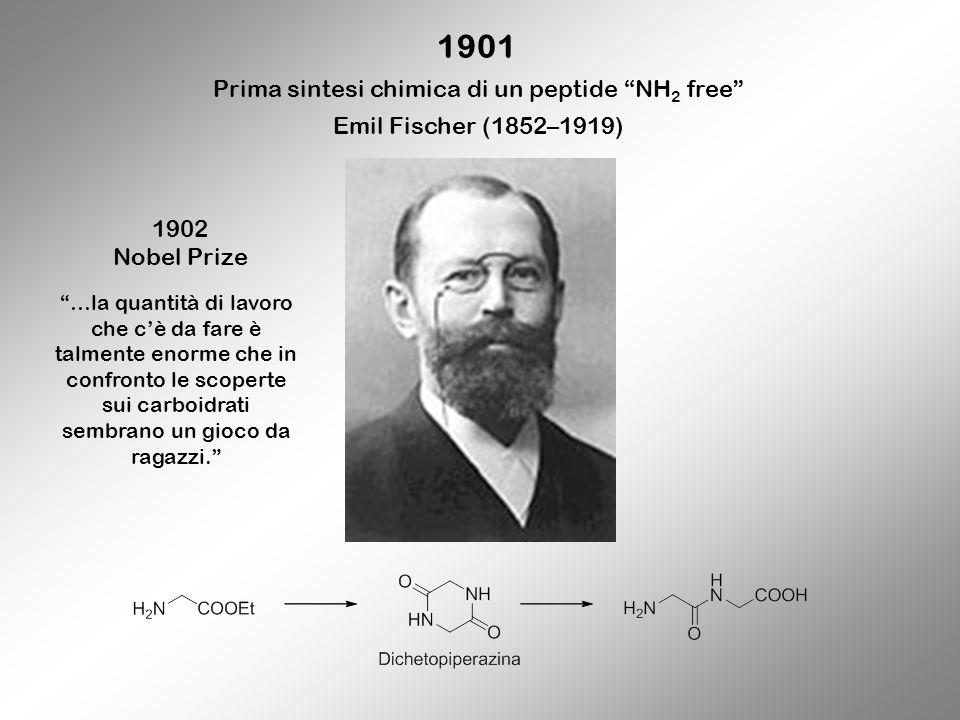 1901 Prima sintesi chimica di un peptide NH 2 free Emil Fischer (1852–1919) 1902 Nobel Prize …la quantità di lavoro che cè da fare è talmente enorme c