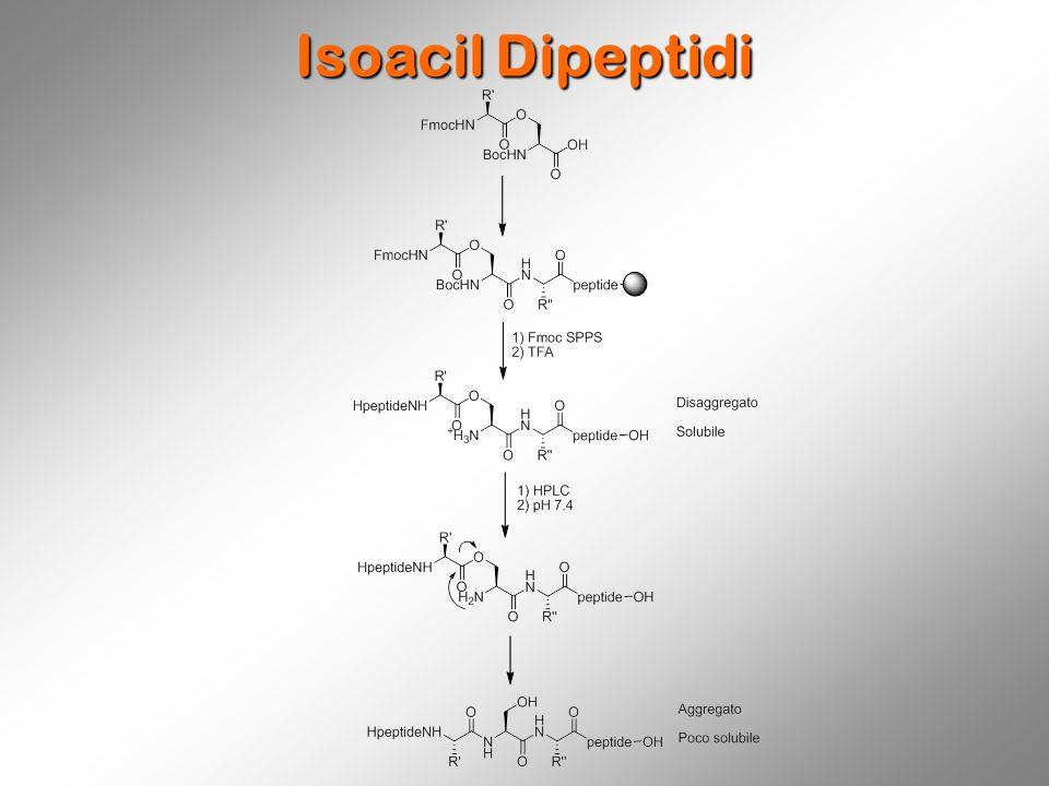 Isoacil Dipeptidi