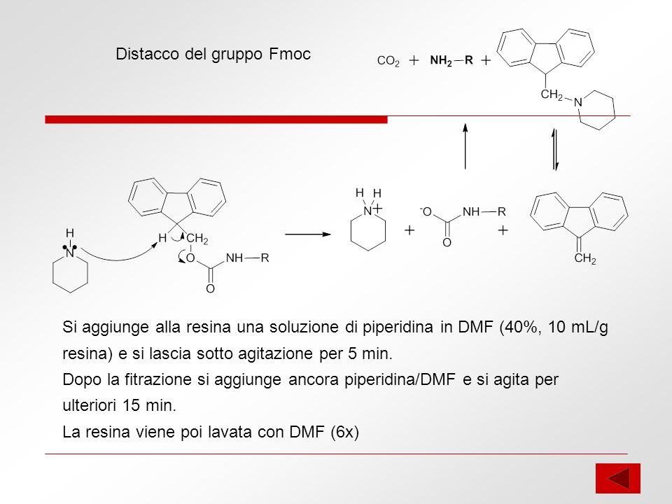 Distacco del gruppo Fmoc Si aggiunge alla resina una soluzione di piperidina in DMF (40%, 10 mL/g resina) e si lascia sotto agitazione per 5 min. Dopo