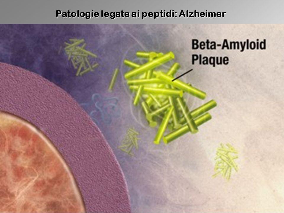 Patologie legate ai peptidi: Alzheimer