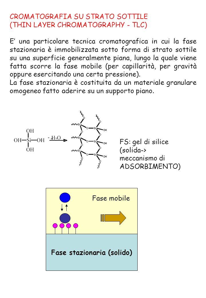 Sviluppo ASCENDENTE (per capillarità) FM + +
