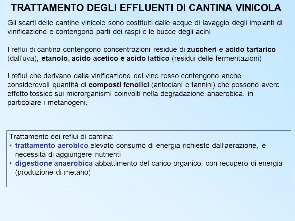 TRATTAMENTO DEGLI EFFLUENTI DI CANTINA VINICOLA Gli scarti delle cantine vinicole sono costituiti dalle acque di lavaggio degli impianti di vinificazione e contengono parti dei raspi e le bucce degli acini I reflui di cantina contengono concentrazioni residue di zuccheri e acido tartarico (dalluva), etanolo, acido acetico e acido lattico (residui delle fermentazioni) I reflui che derivano dalla vinificazione del vino rosso contengono anche considerevoli quantità di composti fenolici (antociani e tannini) che possono avere effetto tossico sui microrganismi coinvolti nella degradazione anaerobica, in particolare i metanogeni.
