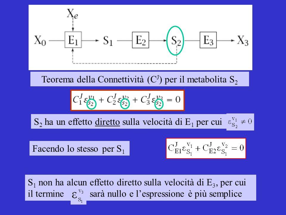 S 1 non ha alcun effetto diretto sulla velocità di E 3, per cui il termine sarà nullo e lespressione è più semplice Teorema della Connettività (C J ) per il metabolita S 2 S 2 ha un effetto diretto sulla velocità di E 1 per cui Facendo lo stesso per S 1